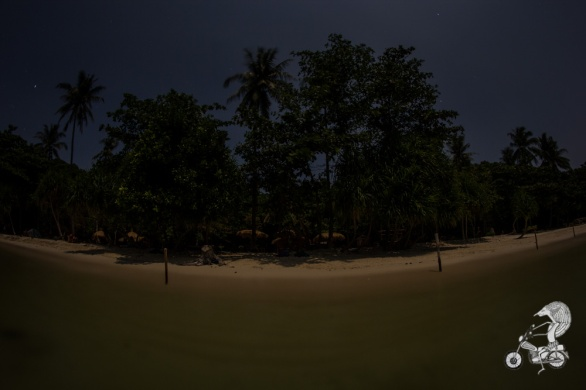 Our beach under full moon.